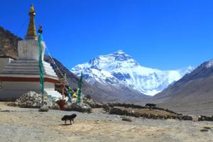 Tibet& Nepal Overland Tour2018 Packages